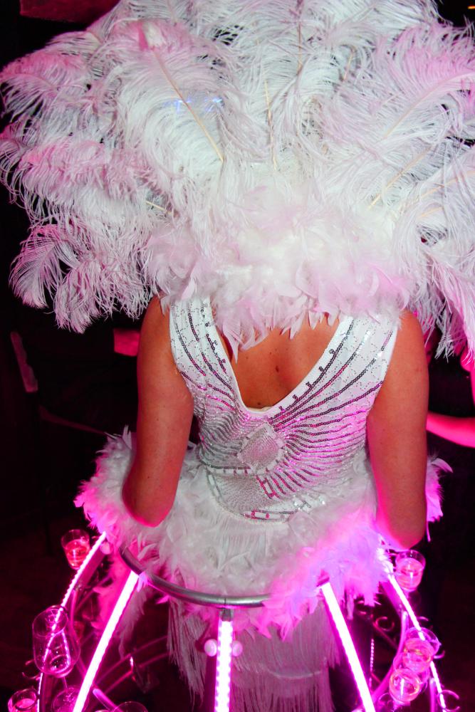 Robe à champagne de l'agence Butterfly - Dos avec plumes d'Autruche blanches et éclairage LED rose